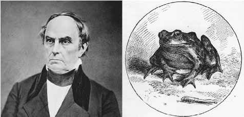 The jumping frog as Daniel Webster. Two images, one a portrait of nineteenth-century statesman Daniel Webster, the other an illustration of the jumping frog as drawn by True Williams for Mark Twains Sketches, New and Old (1875), show a facial r