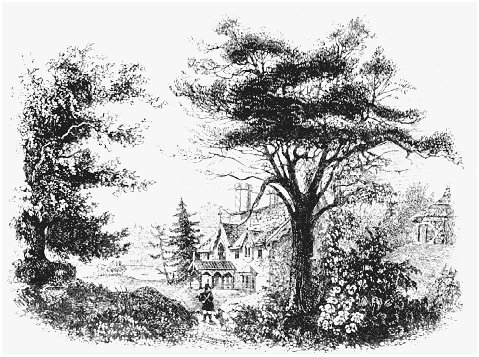 Illustration of a picturesque landscape from Andrew Jackson Downings Landscape Gardening, 1841. In this seminal work, Downing differentiated between two desirable forms of landscaping: the beautiful, characterized by simple and flowing forms, a
