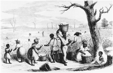 Picking cotton on a Georgia plantation. Wood engraving from Ballous Pictorial Drawing Room Companion, 1858. During the 1850s, newspaper coverage of slavery helped increase public awareness of the issue, but it was not until southern states bega
