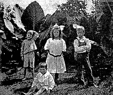 "From left, Murry ""Jack"" Falkner, age eight; Sallie Murry Wilkins, age eight, the boys' first cousin; William Faulkner, age ten; seated, John ""Johncy"" Falkner, age six. The picture was taken in September 1907."
