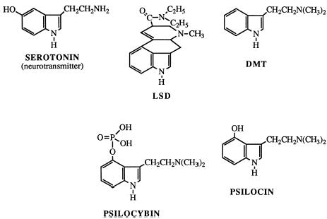 Figure 1 Indole-type Hallucinogens