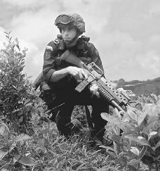 A U.S.-trained Jungle Commando, a member of the National Police, takes part in an anti-drug operation on a coca plantation in Colombia in 2000. The soldier is shown here among the coca plants. Reuters/Corbis.