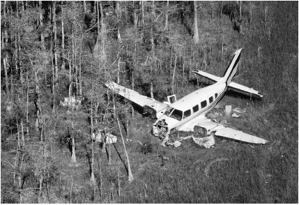 Illegal marijuana is smuggled into the country in cars, trucks, trains, boats, and planes. This plane, used for smuggling marijuana from Jamaica, crashed into a swamp in Florida as it was being pursued by U.S. Customs and DEA officials. Some 80