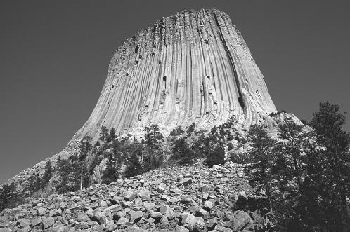 Devil's Tower National Monument in Wyoming is a column of basalt that has resisted weathering, unlike the less-resistent rock that once surrounded it. © Dave G. Houser/Corbis. Reproduced by permission.