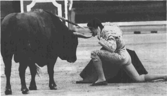 an analysis of the theme of bullfighting in the sun also rises a novel by ernest hemingway Upon its publication in 1926, ernest hemingway's the sun also rises was instantly recognized as one of the important american novels of the post-world war i period this was in part the.