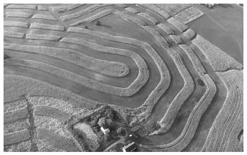 The basic idea behind agronomy is to match crops to their environment. This means following the contours of the land as well as choosing crops best suited for maintaining soil productivity. COURTESY OF THE JOHN DEERE LIBRARY.
