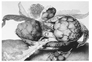 Still life with artichokes in a Chinese dish by Giovanna Garzoni (1600-1670). Collection of the Pitti Palace, Florence. PHOTO COURTESY OF DR. PHOEBE LLOYD.