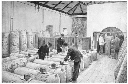 Hop-sampling warehouse at the Guinness brewery, Dublin, Ireland, circa 1915. To maintain the quality of hops used in brewing, samples were taken from various lots of newly purchased hops and tested. ROUGHWOOD COLLECTION.