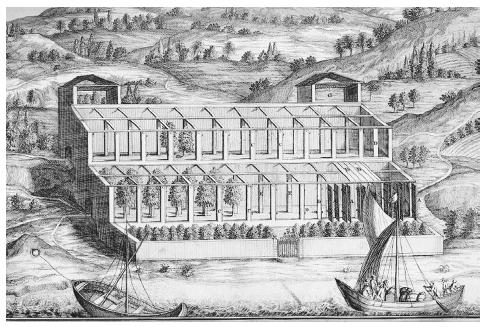 The method for protecting lemon and orange trees during the winter along the Lake of Garda in northern Italy. At the beginning of cold weather, the orangerie was shuttered along the front and roofed over with moveable boards. From Johann Christoph Volkamer's Nürnbergische Hesperides (Nuremberg, 1708). ROUGHWOOD COLLECTION.