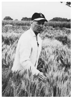 "Norman Borlaug, the acknowledged ""father"" of the Green Revolution. © AP/WIDE WORLD PHOTOS."