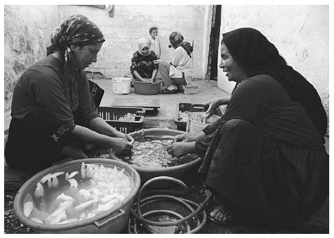 Palestinian refugees washing squid in a courtyard in the Gaza Strip. © ED KASHI/CORBIS.