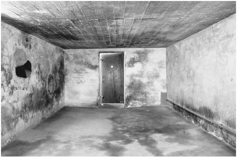 Zyklon B consisted of wood pellets impregnated with liquid hydrocyanic acid. Upon contact with air, the pellets would release deadly hydrogen cyanide gas. In this 1979 photo, the walls of a gas chamber at the Majdanek concentration camp (near L