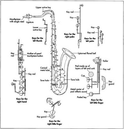 A tenor saxophone and its parts.