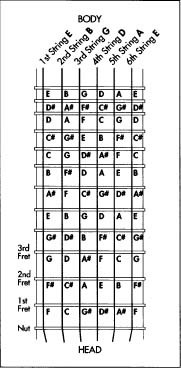 Note positions on an electric guitar.