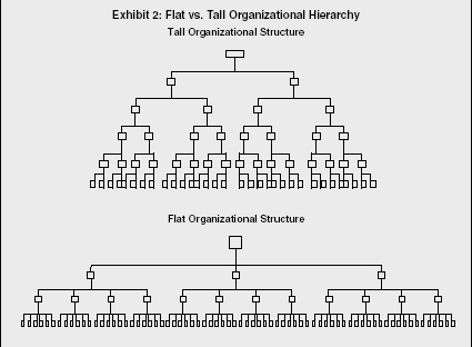 Exhibit 2: Flat vs. Tall Organizational Hierarchy
