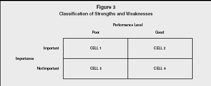 Figure 3 Classification of Strengths and Weaknesses