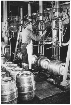 Dispensing beer into kegs.