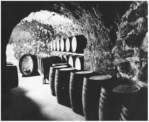 Barrels used to age wine in the wine making process.