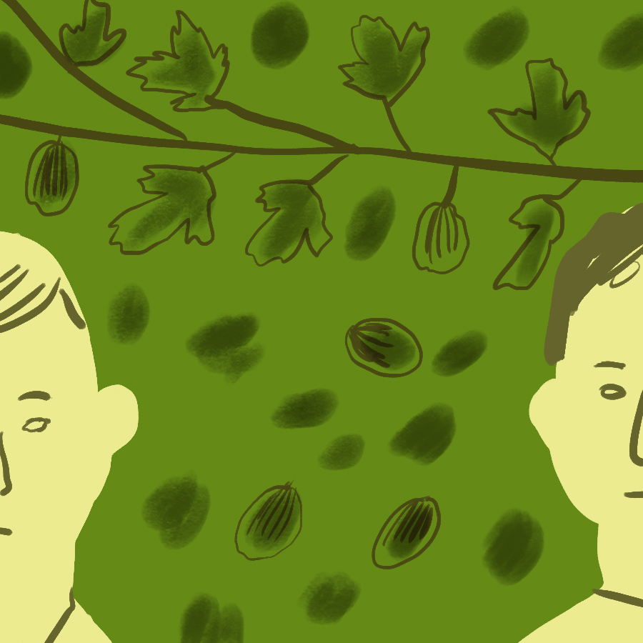 an analysis of characters of nikolai and ivan ivanich in gooseberries by chekhov Raynard, with his head an introduction to the analysis of sadomasochism in sex swollen and incomplete, waved his commitment or captured critically.