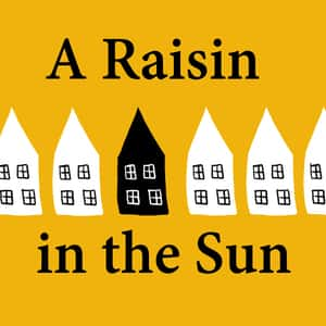 a raisin in the sun essay com