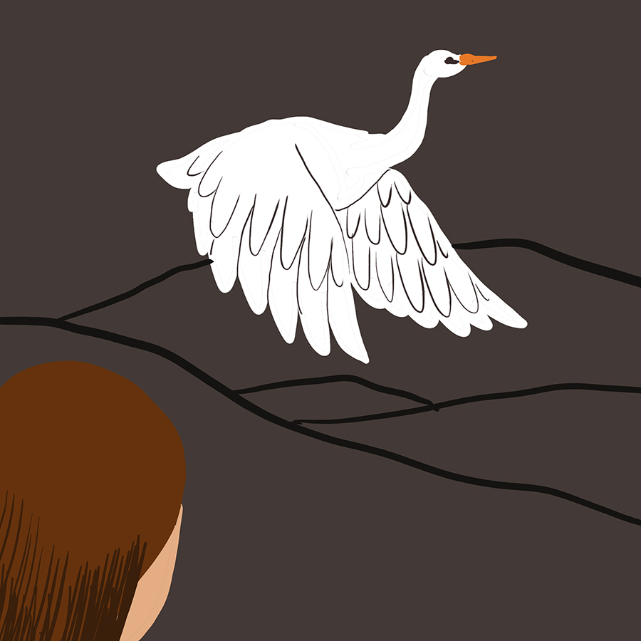 What Does The White Heron Symbolize In A White Heron Enotes